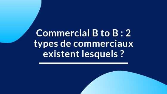 Commercial B to B : 2 types de commerciaux existent lesquels ?